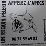 APECS (24)